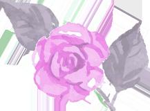 つむぎ保育バラのイラスト