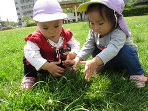 茨城県つむぎ保育園龍ヶ崎園 屋外保育写真