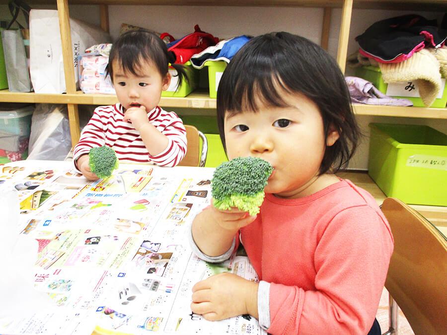 茨城県つむぎ保育園龍ヶ崎園 食育ブロッコリー写真