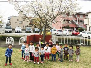 茨城県つむぎ保育園龍ヶ崎園 桜集合写真
