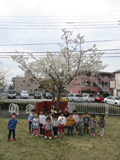 茨城県つむぎ保育園龍ヶ崎園 戸外遊び集合写真