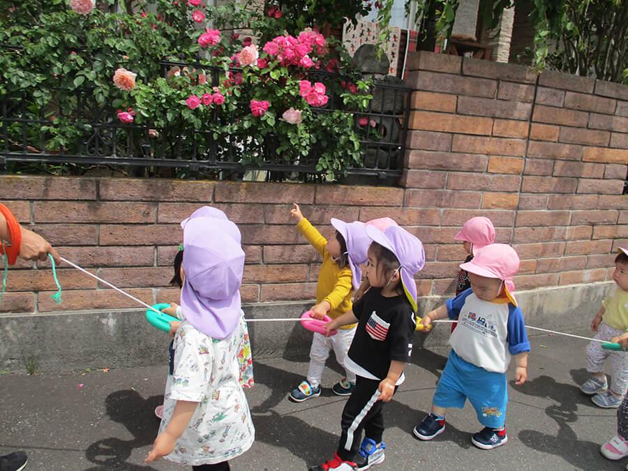 茨城県つむぎ保育園龍ヶ崎園 散歩写真