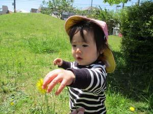 茨城県つむぎ保育園龍ヶ崎園 園外保育写真